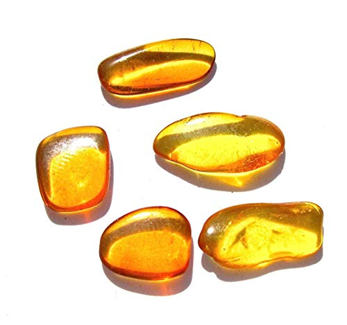 Raw Amber Flat Gemstones Very Small Set Of 5 Stones