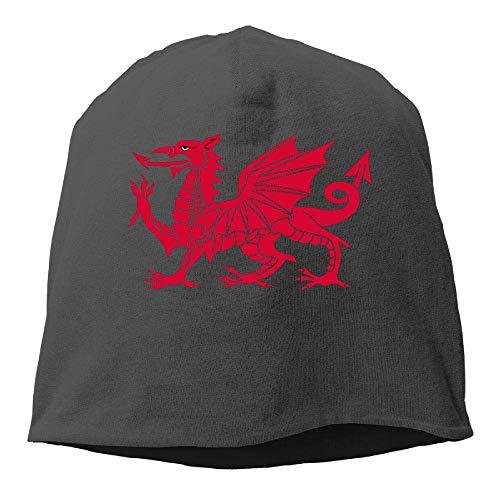 NA Walisische Drachenflagge Wintermütze Skimütze Skimütze Skimütze Langlebig