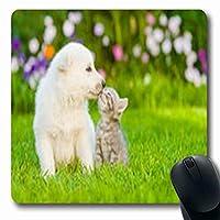 白いスイスシェパードのマウスパッド子犬哺乳類キス子猫野生動物猫赤ちゃん長方形長方形ゲームパッド滑り止めラバーマット