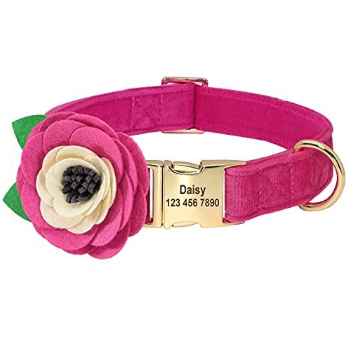 Beirui Collar de terciopelo suave para perro con accesorios de flores extraíbles,collar de perro personalizado con placa de nombre–Collar adorable para perros pequeños medianos grandes(rosa fuerte,S)