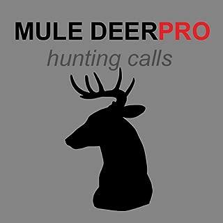 Mule Deer Calls & Deer Sounds for Hunting