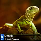 Calendar 2022 Lizards: Cute Lizard Photos Mini Calendar a Monthly Square Book Planner With Inspirational Quotes each Month