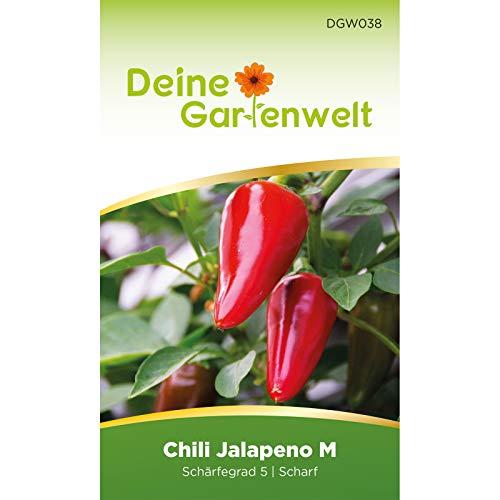 Chili Jalapeno M | Samen für scharfe Chilis | Chilisamen | Jalapenosamen