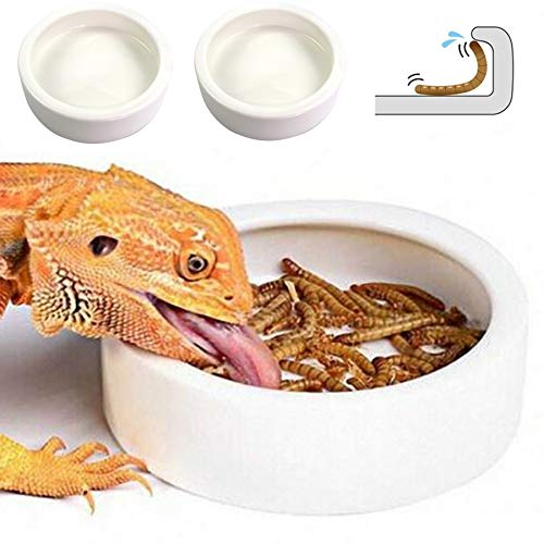 Worm Dish - Large 2 Pcs Reptile Food Water Bowl Lizard Gecko Ceramic Pet Bowls, Mealworms Bowl for Bearded Dragon Chameleon Hermit Crab Dubia Rock Reptile Cricket Dish Anti-Escape Mini Reptile Feeder