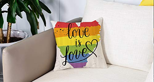 per Divani Decorativo Divano Caso Federa Cuscino Soft, Pride ations, LGBT Gay Lesbian Parade Love Valentines Ispiring Hand Writing Paint Strokes Artist,Cushion Covers Home Decorativi Gettare Federe