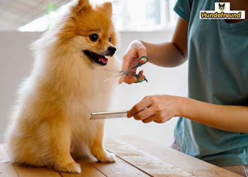 Hundescheren-Set mit Effilierschere zur Fellpflege für alle Hunde | Scheren aus Edelstahl mit abgerundeter Spitze - 3
