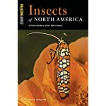 Insects of North America: A Field Guide to Over 300 Insects (Falcon Guides)