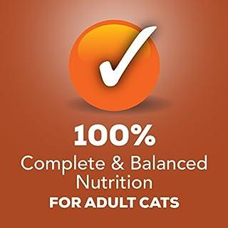 Purina Friskies Pate Wet Cat Food - (24) 5.5 oz. Cans للبيع