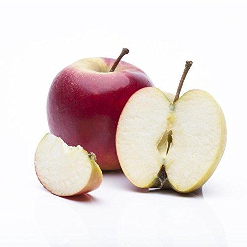 Apfel Baum 'Elstar' Malus domestica 150-200cm im 7,5L Topf gewachsen winterhart - 2