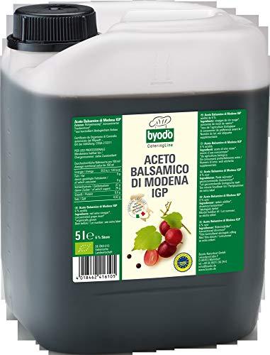 Byodo Aceto Balsamico di Modena, 6{3b6e652a99a34bb617f20844ceac6b2e88d7fbb60a11fe4c1c8ce17eca486996}, 1 er Pack (1 x 5 l Kanister) - Bio