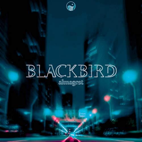Blackbird (Wangan Midnight Maximum Tribute)