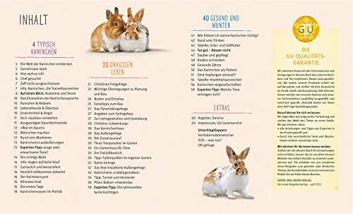 Kaninchen im Außengehege: Pures Frischluft-Vergnügen - 7