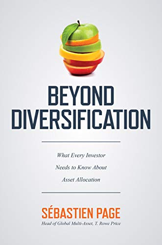 Beyond Diversification: What Every Investor Needs to Know About Asset Allocation (English Edition)