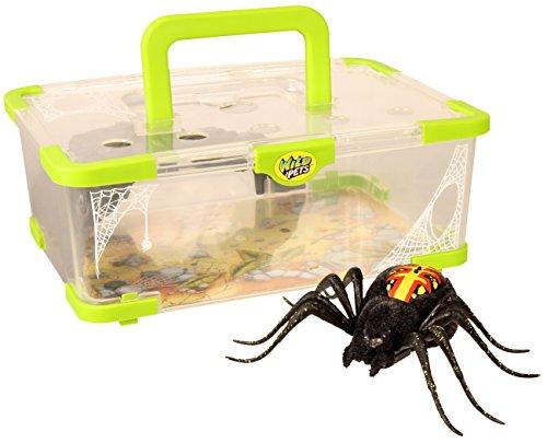 Wild Pets Sauvage Animaux De Compagnie Spider Portique De L'habitat