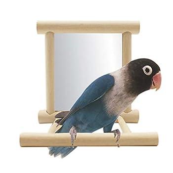 Pywee Oiseau Jouet pour Cage, balançoire Suspendue avec Miroir, Aire de Jeu de cacatoès, échelle pour Perroquet, Bain de Soleil Perruche, Jouets en Bois Naturel
