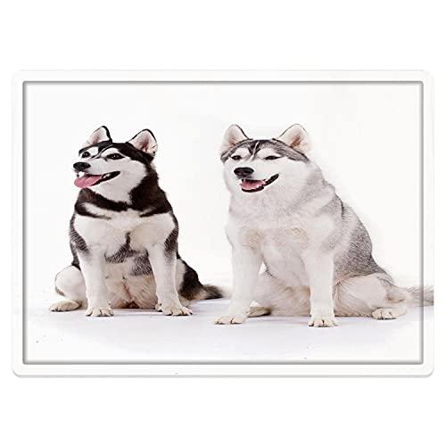 Alfombra de baño Antideslizante 50X80cm,Alaskan Malamute, Furry Arctic Doggies Husky Cachorro Pedigree...