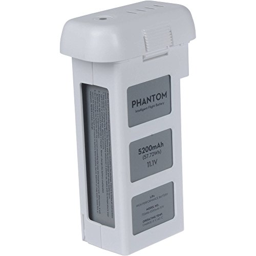 DJI - Batteria di Ricambio per Drone Phantom 2/Phantom 2 Vision/Phantom 2 Vision +, 5200 mAh