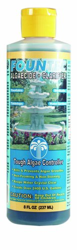 Indoor Fountain Algae Treatments