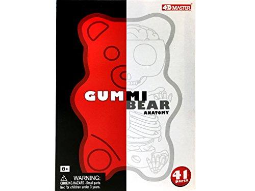 Fame Master Red Gummi Bear Anatomy Model
