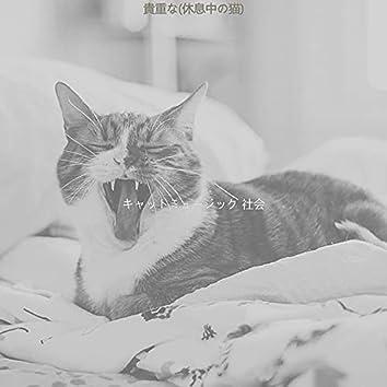 貴重な(休息中の猫)