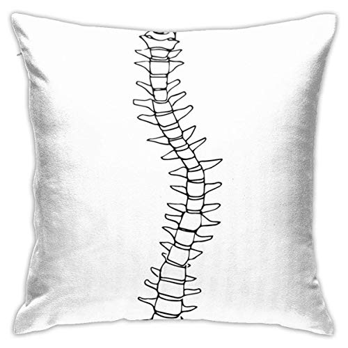 NotApplicable Couch Cushions Scoliosis Anime Birthday Gifts Square Sofa Throw Pillow Covers Home Decorative Office Couch Pillow Case Dormitory Living Room 45X45Cm Bedroom Cute Zipped