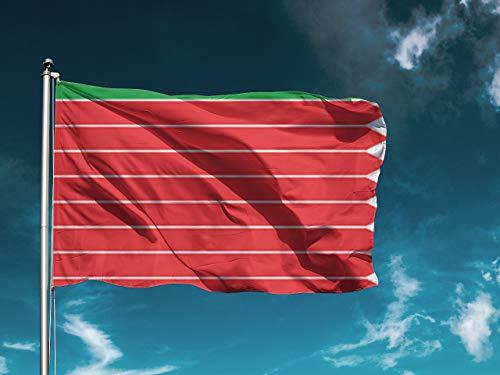 G I Bandera Zamora | Medidas 150cm x 85cm | Fácil colocación | Decoración Exteriores (1 Unidad)