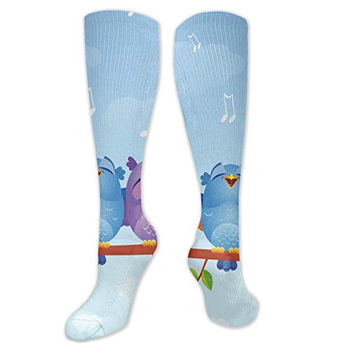 boys socks,Colorful Cartoon Birds Singing Merrily On A Branch In A Warm Spring Day Fun Animals,Womens Funny Socks Ladies Cotton Socks Funky Socks Novelty Crew Mens Socks, Christmas Gift