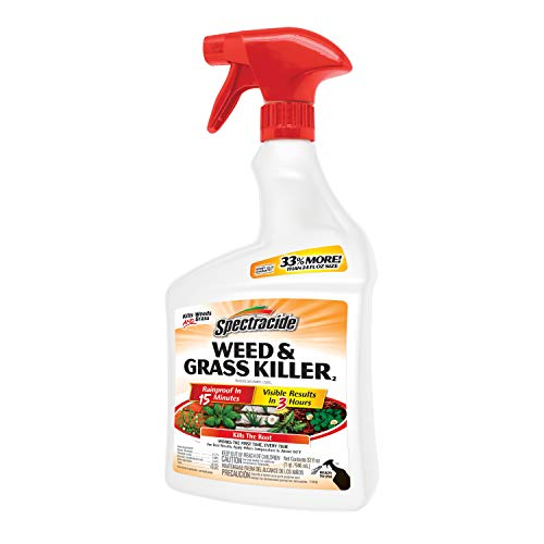 Spectracide Weed & Grass Killer2, Ready-to-Use, 32-Ounce, 12-Pack