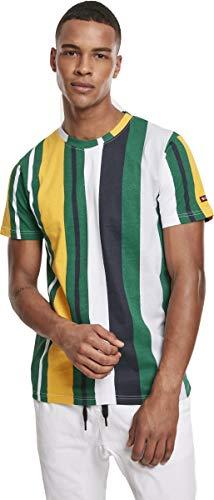 Southpole Herren Vertical Block AOP T-Shirt, Green, L