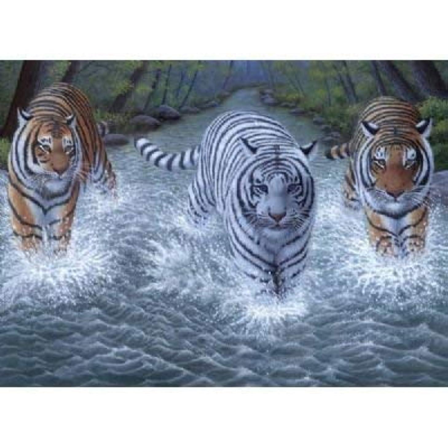 Royal & Langnickel PJL34 11 1/4 x 15 3/8 Junior Large Set Three Tigers