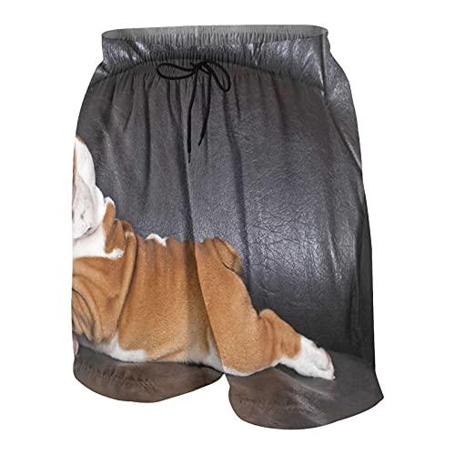 Bañador Personalizado para Hombre,Cachorro descansando en un sofá,fotografía de Animales Divertidos,Lindo canino,Ropa de Playa,bañadores,bañadores,bañadores,XL