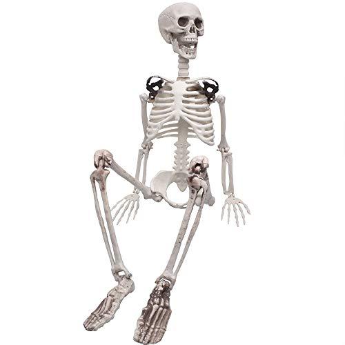 XONOR - Esqueleto de cuerpo completo de 90 cm con articulaciones móviles para decoración de Halloween