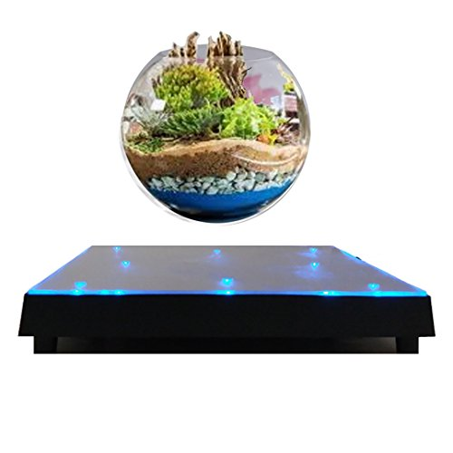 Garten in Levitation Babylonia mit Basis in Levitation blau–blau