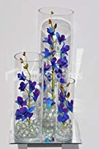 Best silk singapore orchids Reviews