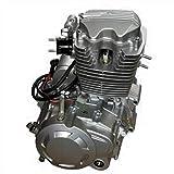 DYRABREST 200CC 250CC 4 Stroke Engine Motor, Vertical Single Cylinder Motor Air Cooled w/Manual 5-Speed Transmission for ATV Go Kart