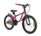 LÖWENRAD Bicicleta Infantil para niños y niñas a Partir de 6 años | Bici 20' Pulgadas con Frenos | Berry