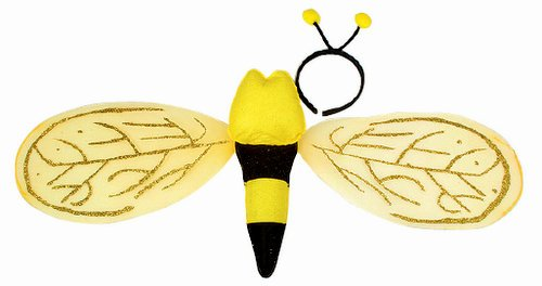 Bee Wing with Headband Set