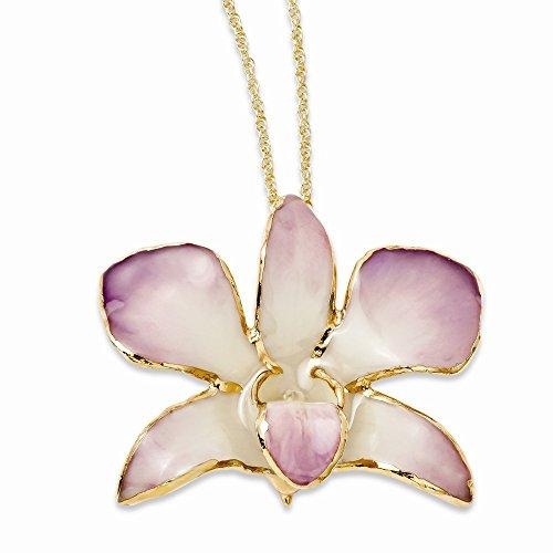 fertilizante para orquideas nutrigarden fabricante Jewels By Lux