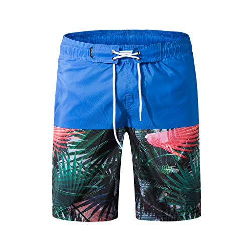 Xmiral Herren Badeshorts Boardshorts Badehose Schwimmhose Männer Beach Print Beachshorts(6XL,Blau)