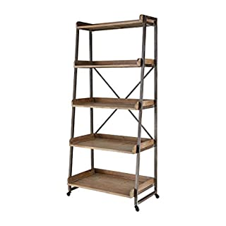 Sterling Home Hildago Bookshelf in Natural Wood and Pewter bookcase, Multicolor (B07S1PYTH7)   Amazon price tracker / tracking, Amazon price history charts, Amazon price watches, Amazon price drop alerts