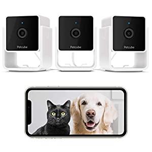 Petcube Pack of 3 Cam Pet Monitoring Camera with Built-in Vet Chat for Cats & Dogs, Security Camera with 1080p HD Video, Night Vision, Two-Way Audio, Magnet Mounting for Entire Home Surveillance