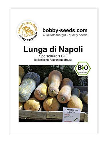 Lunga di Napoli BIO Kürbissamen von Bobby-Seeds Portion