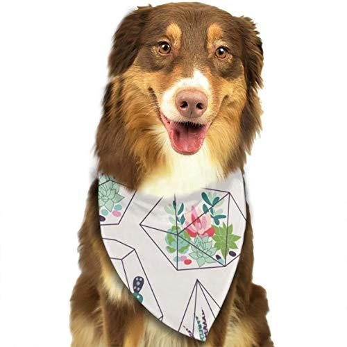 Vetplanten En Cactussen Textuur In Terrariums Aangepaste Hond Hoofddoek Heldere Gekleurde Sjaals Leuke Driehoek Bibs Accessoires Voor Huisdier Honden