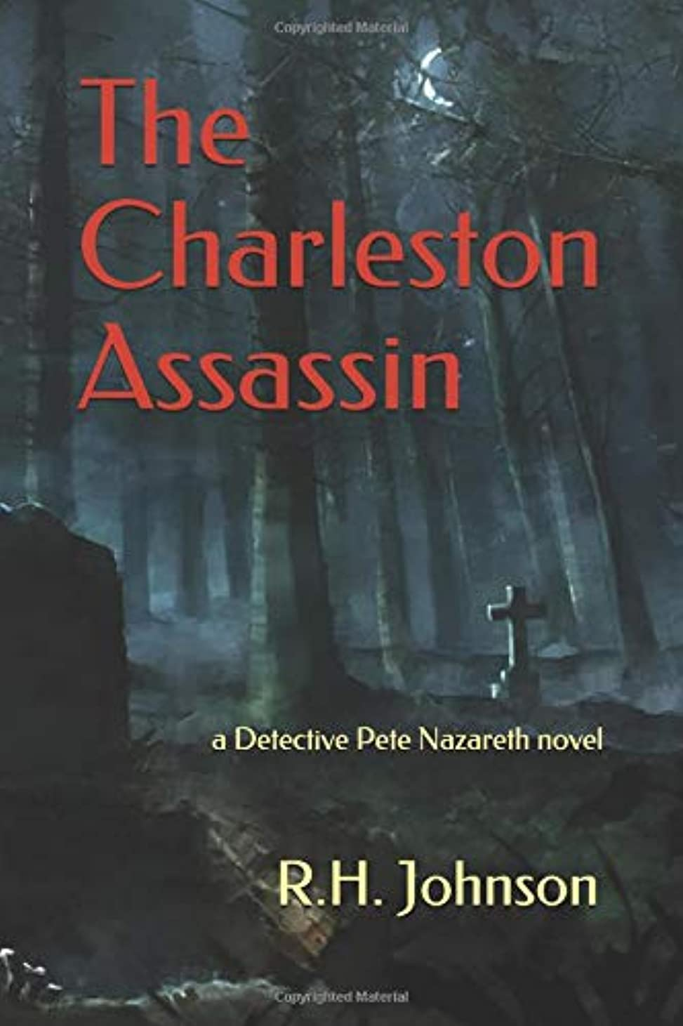 統合する認める広告The Charleston Assassin: a Detective Pete Nazareth novel