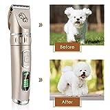 Zoom IMG-1 youthink tosatrici professionali per cani