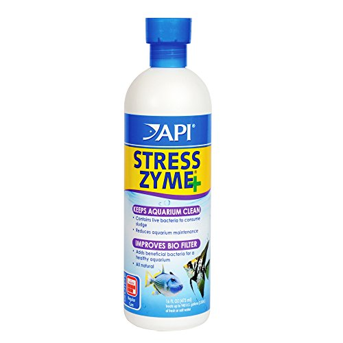API STRESS ZYME Aquarium Bacteria, Consumes Sludge And Keeps Aquarium Clean, 16-Ounce Bottle (56E)