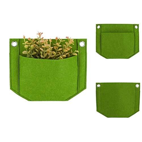 MINGMIN-DZ Dauerhaft 5 Stück Decke hängende Blumenkasten Außengartenpflanze Greening Wand Pflanztaschen (Color : Green)