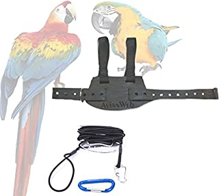 Best ez bird harness Reviews