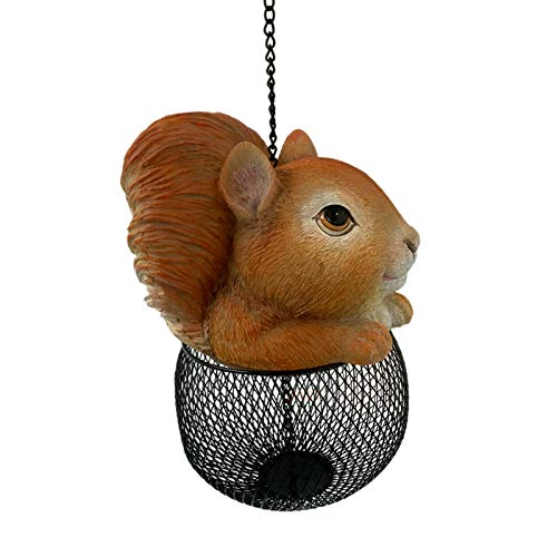 Darthome Ltd Outdoor Garden Chain Wall Hanging Squirrel Wild Bird Seed Nut Feeder Station New 38cm