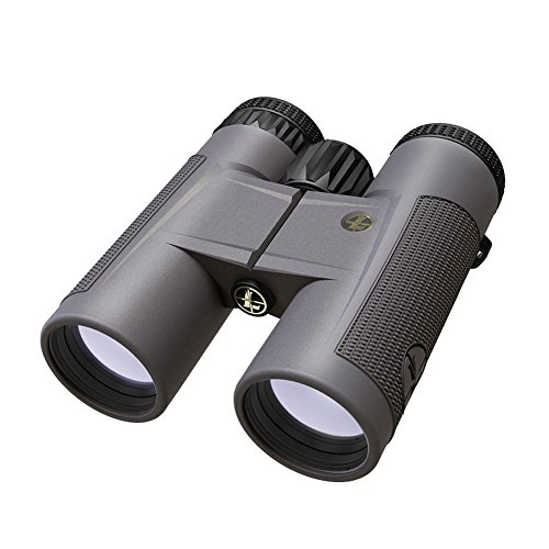Leupold BX-2 Tioga HD 10x42mm Binoculars